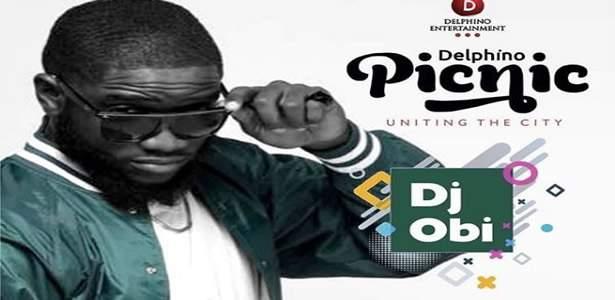 Abuja Get Ready! Come experience the Delphino Picnic