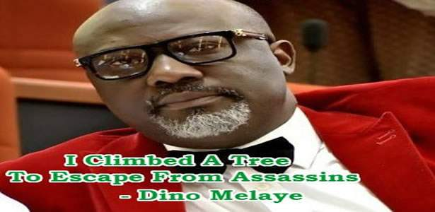 dino-melaye-climbed-a-tree-escape-assassins